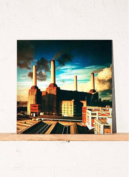 LP Pink Floyd - Animals